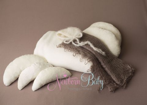 NEWBORN BABY PHOTOGRAPHY Starter Pack ~ with Posing Cushions